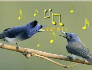 Hindi Songs With Whistling – Mehfil Mein Meri