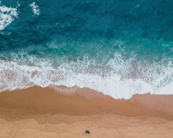 sea shore pexels